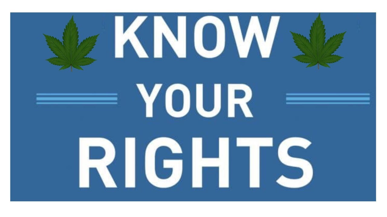 Know your rights ! Cannabis