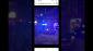 Women Shot at