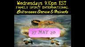 FAMILY SPIRIT INTERNATIONAL-27 MAY 20